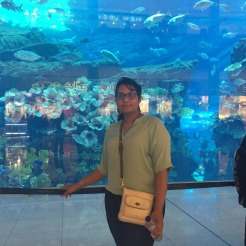 Dubai Mall Aquarium with shark in the background